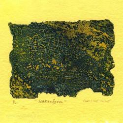 Caroline Coode 3, United Kingdom, Waterform, Viscosity Etching, 8 x 12,5 cm