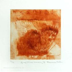 Eleanora Hofer 2, South Africa, Fugitive Memory V, Solar Etching, Blind Embossing, 10,5 x 10,5 cm, 2012