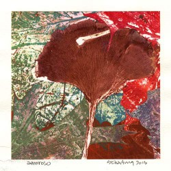 John Schartung 2, USA, Amoroso, Mono Print, 13 x 13 cm, 2015
