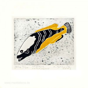 Leena Golnik 1, Finland, Labrus Ossifagus, Vinylcut Print, 8 x 10 cm, 2002