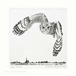 Marian Vergouwen1, Netherlands, Vlucht Flight Lijnets, Etching, 10 x 10 cm, 2015