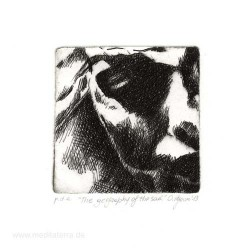 Olivia Pegoraro 1, Italy, The Geography of the Soul, Drypoint, 17 x 18 cm, 2013