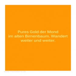 Haiku-Gedicht, . Birnbaum und Mond, . Gabriele Walter