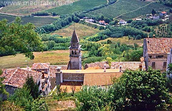 Blick von Motovun auf die rebselige Landschaft Istriens