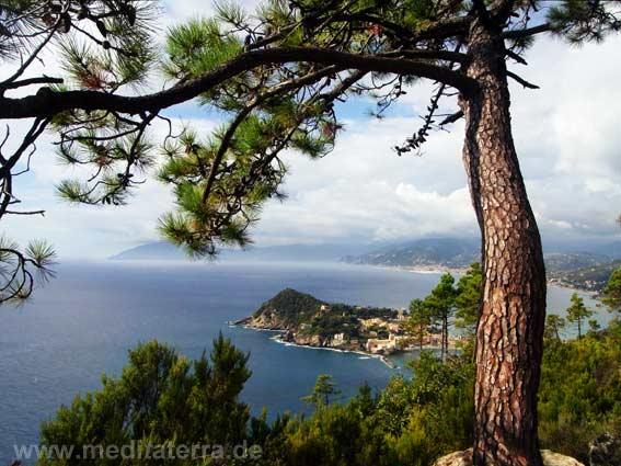 Traumhaft der Blick auf die Halbinsel Montebello in Ligurien