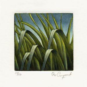 "Bo Cronqvist, 1, Sweden, ""Grass"", 2010, Etching, 10 x 10 cm"