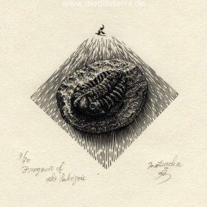 Atsushi Matsuoka 4, Japan, Fragment of Paleozoic, 2013, Wood Engraving, 7.7 x 8.0 cm, 73