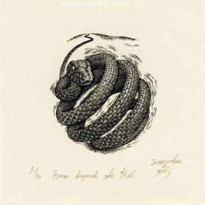 Atsushi Matsuoka 5, Japan, From beyond the Hill, 2012, Wood Engraving, 7.1 x 6.2 cm, 90