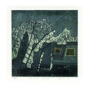 Bev Thompson 2, Canada, Jarkot, Nepal, 2010, Etching, Viscosity, Intaglio, 10 x 10 cm