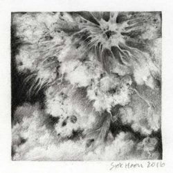 Ng Siok Hoon 1, Singapore, Cloudscape I, 2016, Charcoal, 13 x 13 cm