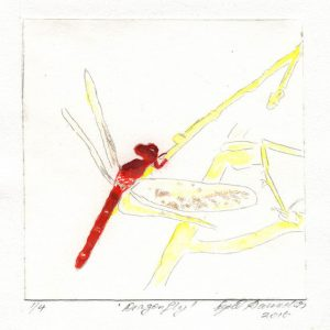 Nyrel Saunders 1, Australia, Dragonfly, 2016, Drypoint Hand Coloured, 13 x 13 cm