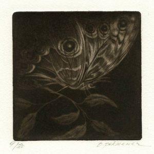Oya Pekmener 1, Turkey, Butterfly, 2016, Mezzotint, 12,5 x 12,5 cm