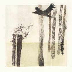 Sandra Mayo 1, USA, Solitud, 2016, Monotype, 18 x 18 cm