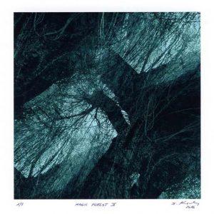 Serge Koch 2, Luxembourg, Magic Forest 2, 2016, Digital Print, 13 x 13 cm