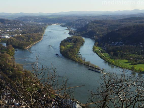 Rheinpanorama vom Drachenfels