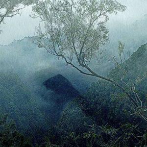"""Detail aus dem Bild """"Unreachable"""" der amerikanischen Künstlerin Annimari Taivalsaari"""