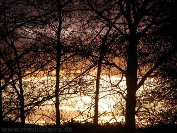 Wintersonne - Sehnsucht nach Licht? Gedicht von Johann Wolfgang Goethe