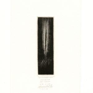 Agim Salihu 18, Kosovo, ILLUMINATION, 2013, Aquatint Dry Point, 10 x 2.5 cm