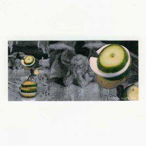 Anja Morisse 1, Germany, 4BB Inferno 2572, 2016, Digital Print, Fotografie,14 x 6,5 cm
