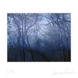 Annimari Taivalsaari 1, Finland, Behind the Forest, 2015, Photo, Pigment print, 10 x 13 cm