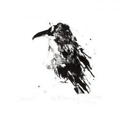 Maja Seweryn 2, Poland, A Bird, 2017, Algraphy, 10 x 12 cm