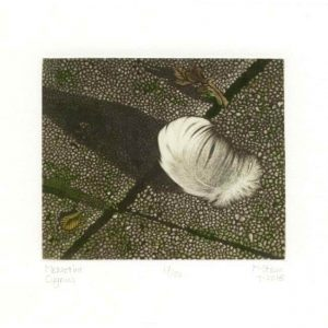Marianne Stam 1, Netherlands, Cygnus, 2015, Mezzotint, 10 x 12 cm