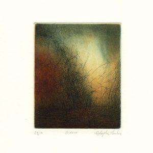 Stephen Lawlor, 11, Ireland, Island, Etching, 11 x 9 cm