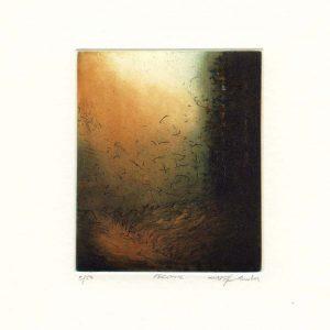 Stephen Lawlor, 2, Ireland, Enigma, Etching, 11 x 9 cm