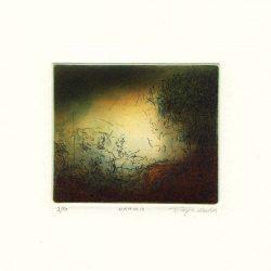 Stephen Lawlor, 4, Ireland, Drama, Etching, 8 x 9.5 cm