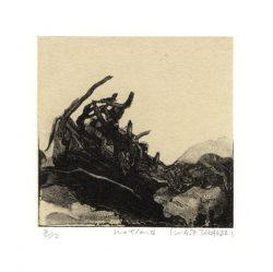 Takanori Iwase 3, Japan, Wetlands, 2009, Waterless Lithograph, 10 x 10 cm