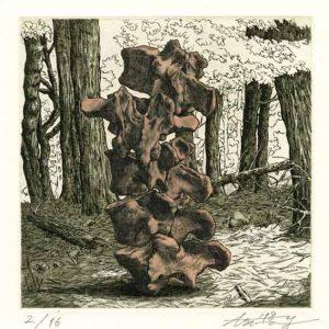 Asuna Yamauchi 10, Japan, Pale Pink Bones: Deep Forest 2, 2018, Etching, Aquatint, 15 x 15 cm, 80