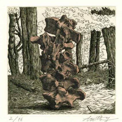 Asuna Yamauchi 10, Japan, Pale Pink Bones: Deep Forest 2, 2018, Etching, Aquatint, 15 x 15 cm, 80