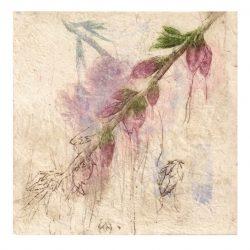 Elisabeth Schjønsby 1, Norway, Disintergrate I, Variation, 2016, Etching, Drypoint, Chine Collé, 20 x 20 cm