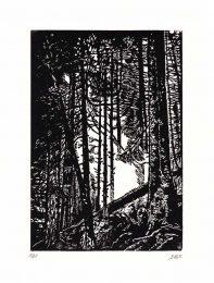 Frederique Badonnel 1, France, Balade, 2017, Linogravure, 14,3 x 21 cm