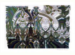 Gerald Hushlak 2, Canada, Spirits of the Clearcut #2, 2019, Digital Print, 20 x 28 cm