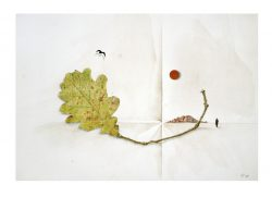 Gerhard Rasser 1, Austria, Going, 2018, Mixed Media, 29 x 20 cm