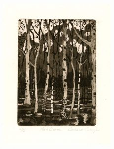 Gerhardt Gallagher 2, Ireland, Ash Grove, 2014, Aquatint Etching, 18 x 25 cm