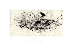 Haruka Mitsuishi 3, Japan, Roots, 2018, Copper Print (Drypoint), 29 x 20 cm