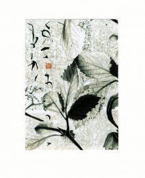 Jeanne Pannier, France, The Poet's Garden 1, 2018, Photo Montage and Chinese Ink, 18 x 12,5 cm