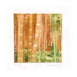 Julia Sanchez 2, Spain, Bambu-90, 2017, Photogravure, 18,5 x 24,5 cm