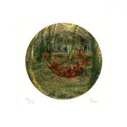 Nuria Pena 1, Spain, Inward 1, Printmaking, Etching on Copper, Digital Print, 19 x 28 cm