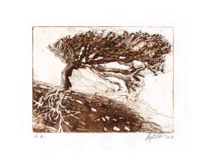 Sieglinde Ferchner 1, Austria, Roots - Verwurzelt, 2018, Etching, Aquatint, 28,5 x 20 cm