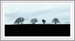 Rune Baashus 3, Norway, Oak Hill, 2019, Photo/DGA, 20 x 10 cm