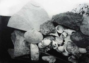 Alina Jackiewicz-Kaczmarek, Poland, Fossil III, 2019, Intaglio, 12,5 x 17,5 cm