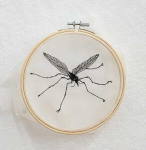 Aomi Kikuchi, Japan, Crane Fly, 2020, silk embroidery, 16 cm round