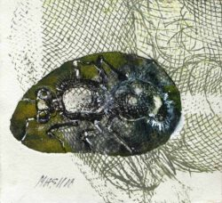Masha Orlovich, Israel, Ani 45 - An Ant, etching and mixed technique on paper, 18 x 16,5 cm