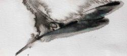Sirkka Laakkonen, Finland, Plunge, 2021, watercolor, 12,5 x 29 cm