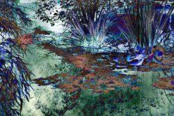 Angela P Schapiro, USA, Giverny #1, 2020, digital photograph, 76 x 50 cm