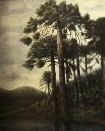 Roxana Werner, Chile, Araucarias, 2000, oil on canvas, 100 x 0,81 cm