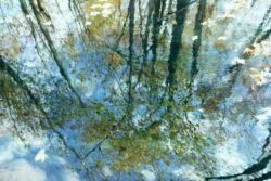 Yvan LaFontaine, Canada, L'Eau Trouble, 2020, digital print, 50,8 x 76,2 cm